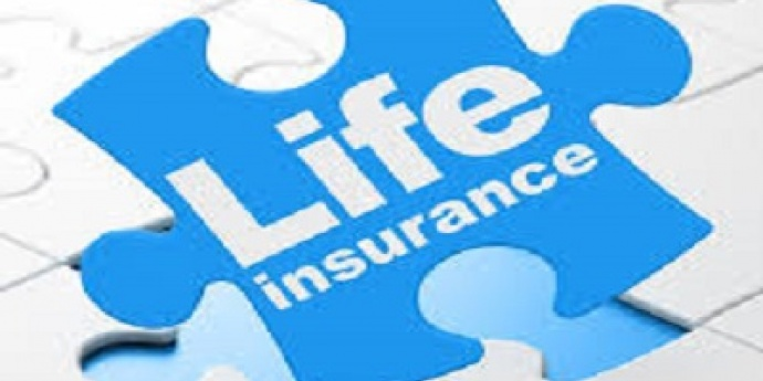 life insurance puzzle