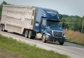 Freight Tractor Trailer